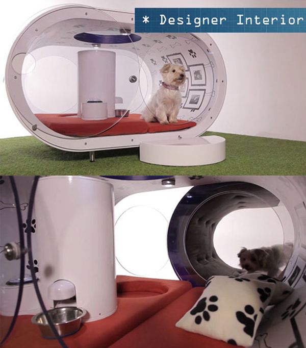 Here Modern Dog House Offerings From Samsung That Will Be Difficult For You To Miss Out