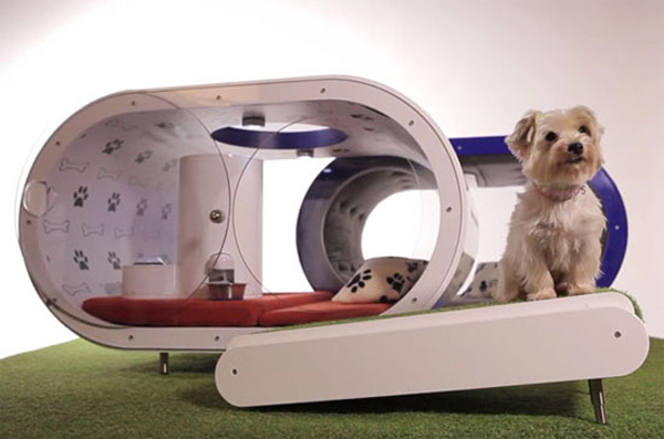Modern Dog House With Smart Concept Home Design And Interior