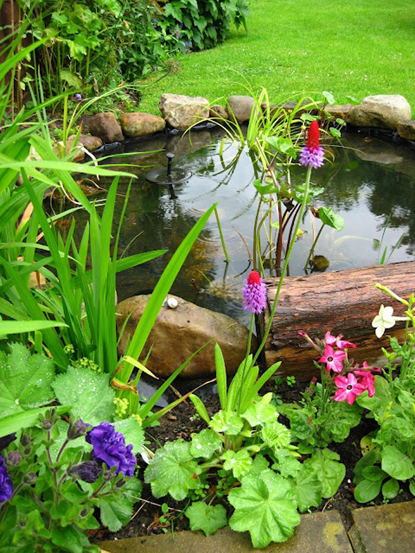 Wooden Backyard Pond Design