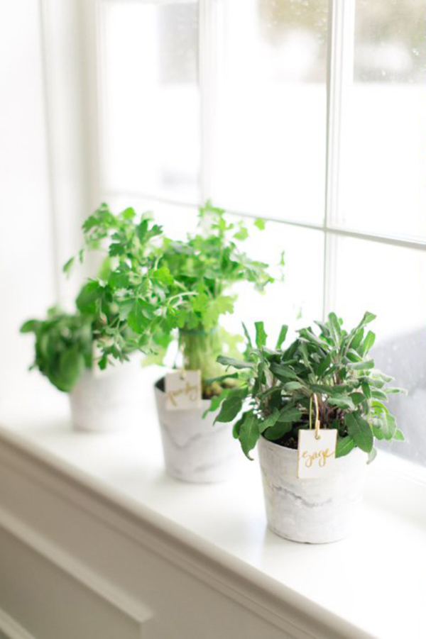 20 indoor herb garden ideas home design and interior for Design indoor herb garden
