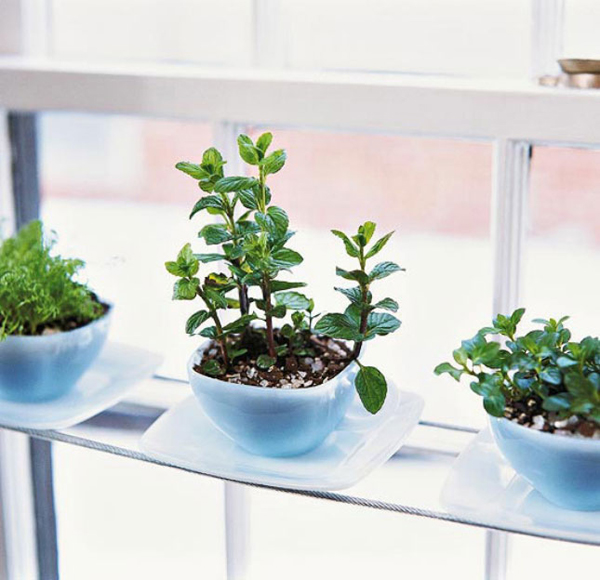 Herb Garden Container Ideas: 20 Indoor Herb Garden Ideas