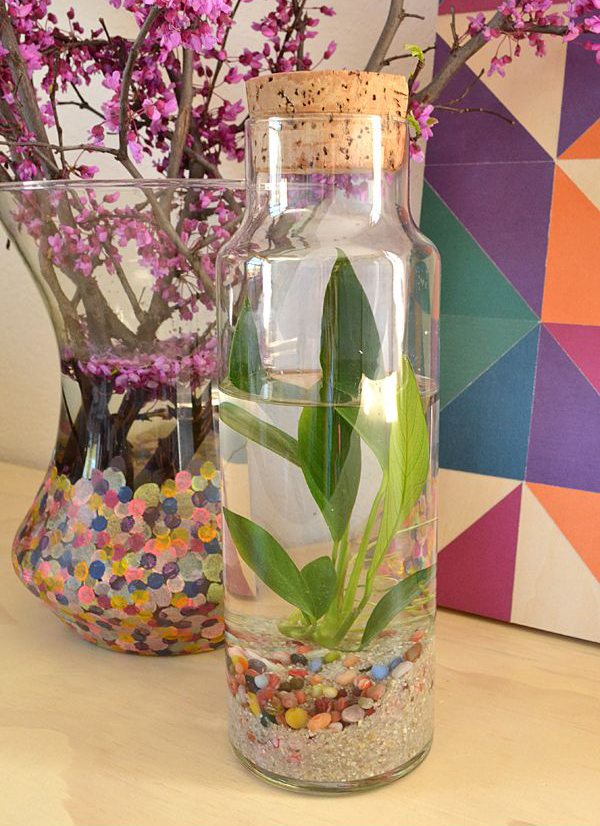 living room ideas photo gallery - diy easy water terrarium