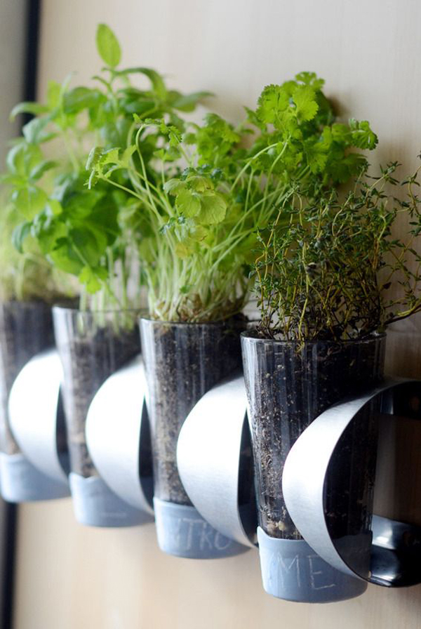 Amazing Easy Indoor Gardening Ideas Part - 8: 10 Simple Ideas For Indoor DIY Garden