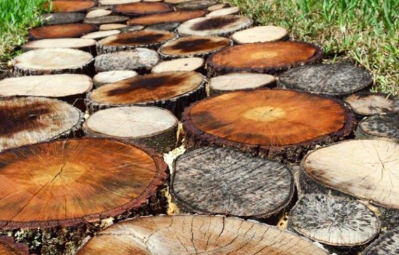 DIY-natural-log-pathway