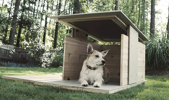 puphaus-modern-dog-digs-designs