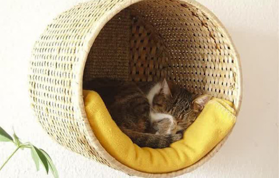 IKEA-basket-bed-for-cats