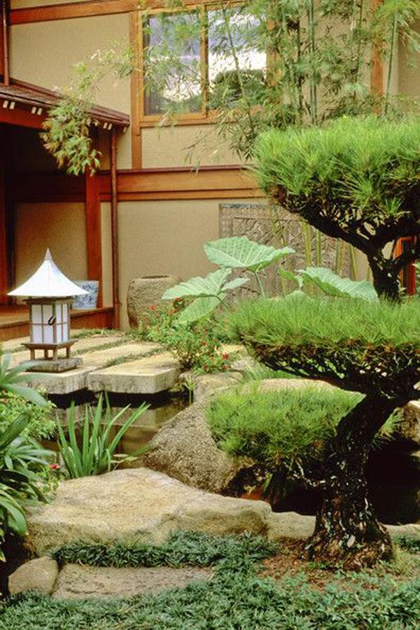 15 Cozy Japanese Courtyard Garden Ideas Home Design And