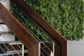 green-vertical-garden-with-stairs