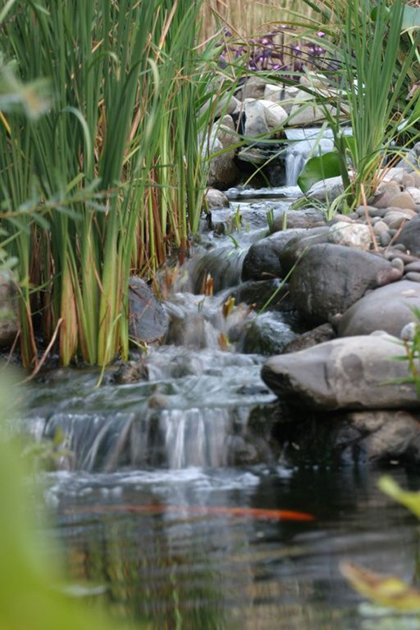 Simple backyard pond waterfalls for Simple backyard ponds