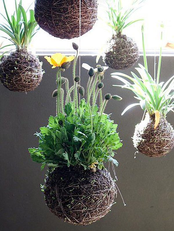 Hanging Garden Ideas swinging hanging garden Beautiful Hanging Garden Ideas