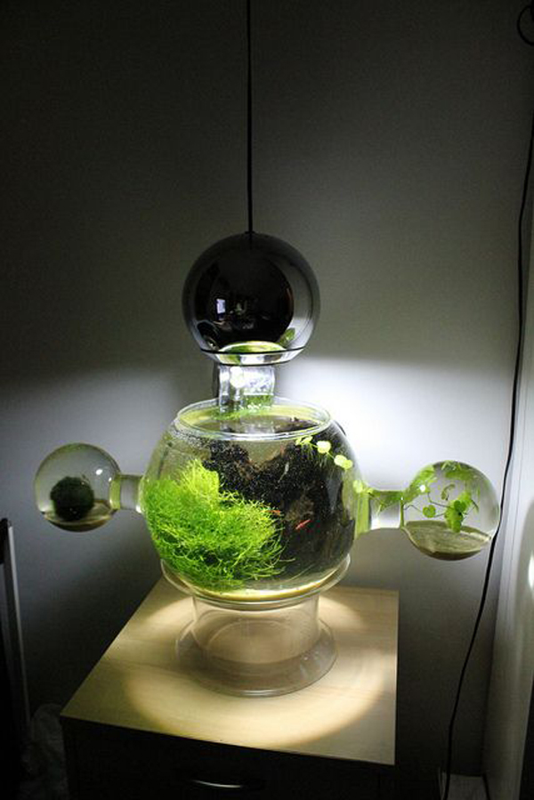20 most creative aquariums with tiny ideas home design and interior. Black Bedroom Furniture Sets. Home Design Ideas