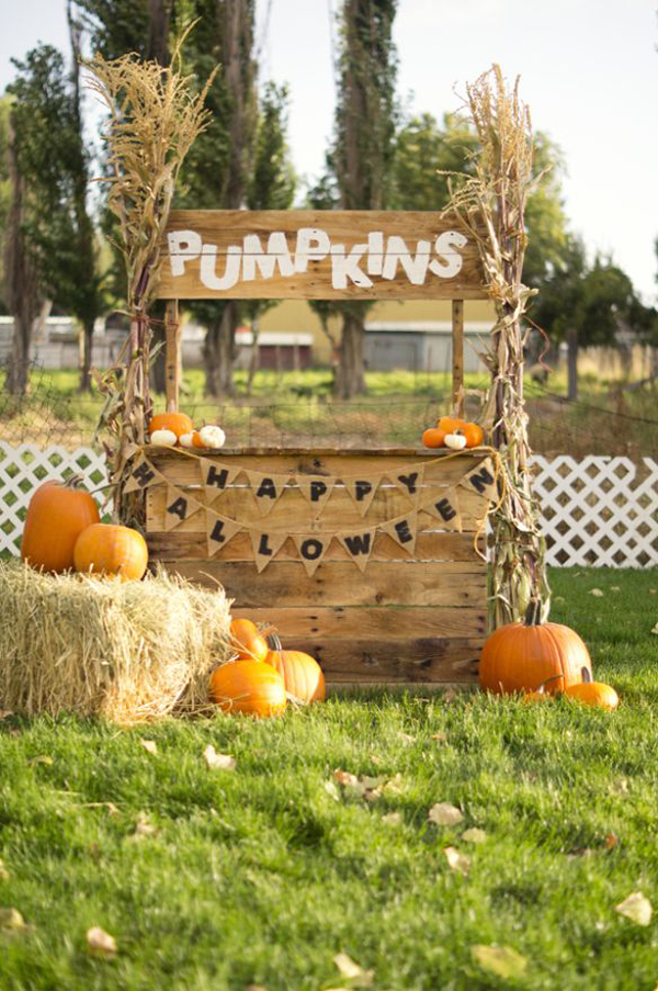 20 Outdoor Pumpkin Stands For Kids Play Home Design And
