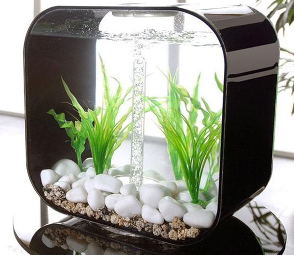 Home Aquarium Design Ideas: Small-aquarium-for-table-design