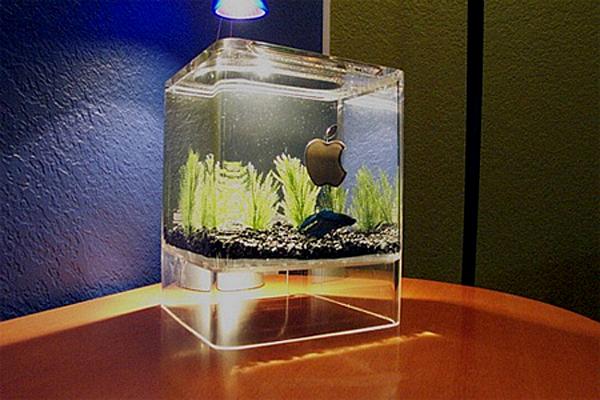 20 Most Creative Aquariums With Tiny Ideas Home Design And Interior