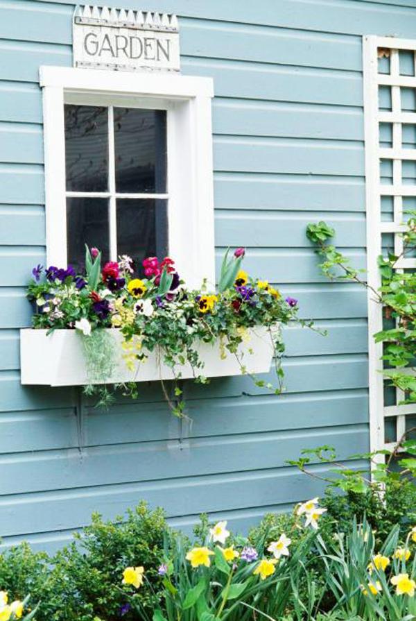 Blue Spring Window Box Planters