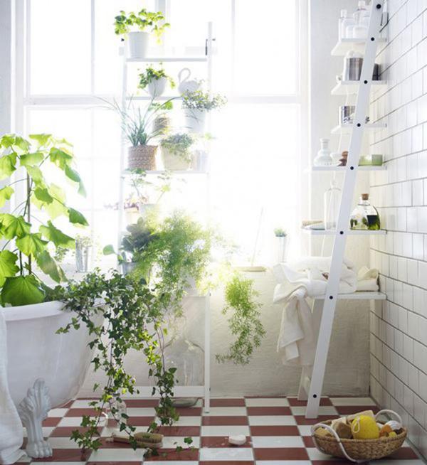 Beautiful Indoor Garden In Bathroom