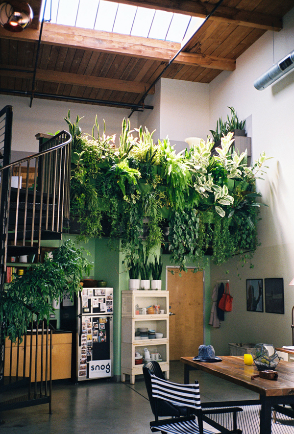 Indoor Garden Apartment Indoor garden for small apartment workwithnaturefo