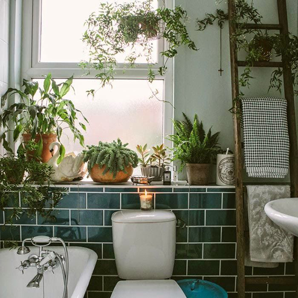 indoor apartment garden. indoor apartment garden m