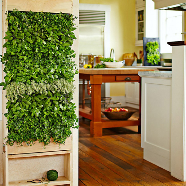 Superieur Indoor Herb Garden Wall. «