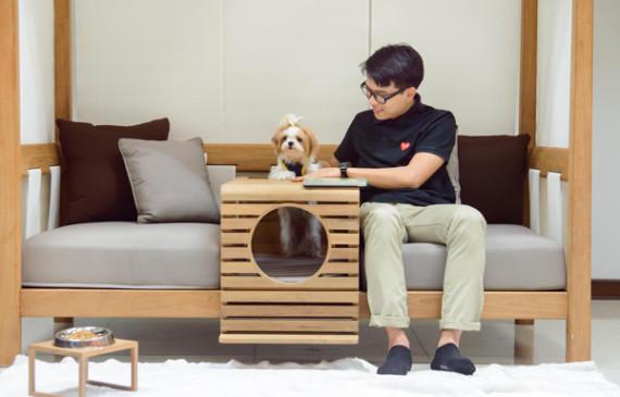 pet-furniture-unit-integrated-to-human