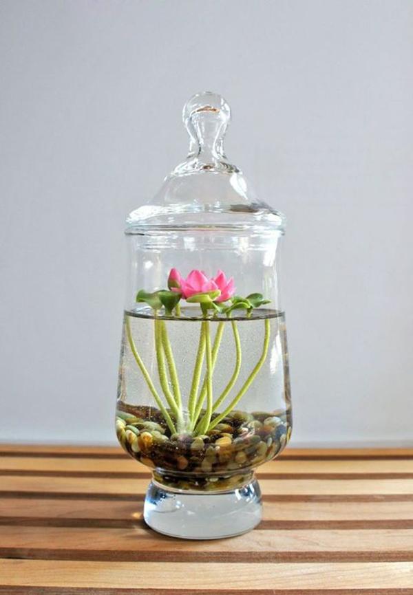 15 DIY Indoor Water Garden Ideas