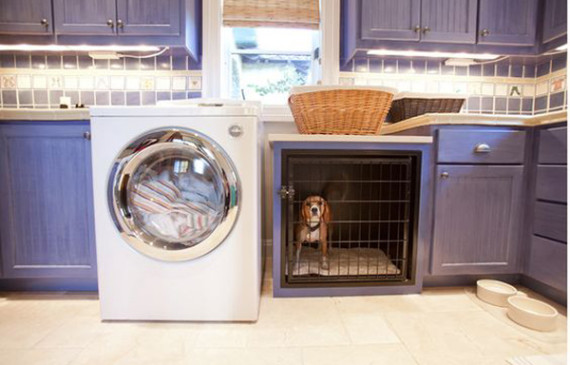purple-laundry-room-with-stylish-dog-crates