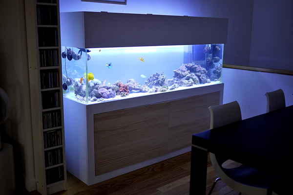 20 Modern Aquariums For Cool Interior Styles Home Design