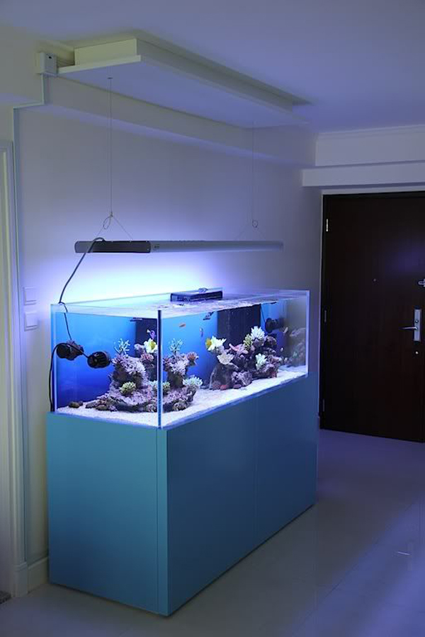 Home aquarium interior design home design and style for Aquarium interior designs pictures