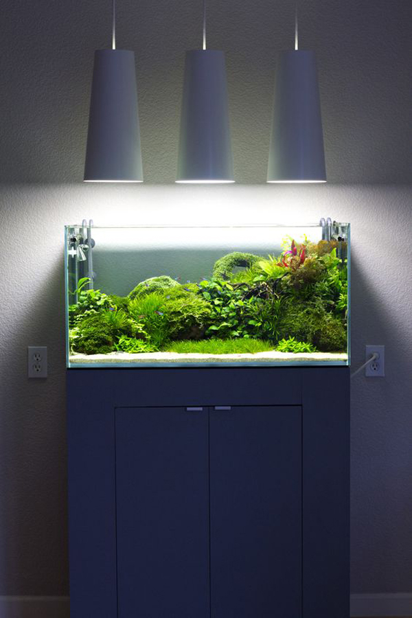 20 modern aquariums for cool interior styles home design for Aquarium interior designs pictures