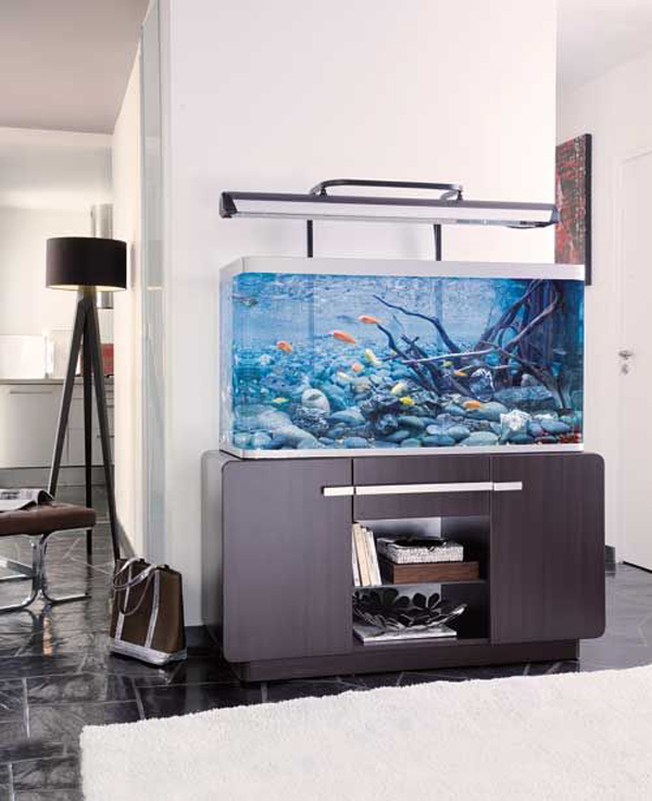 Home Aquarium Design Ideas: Minimalist-aquarium-decor-ideas