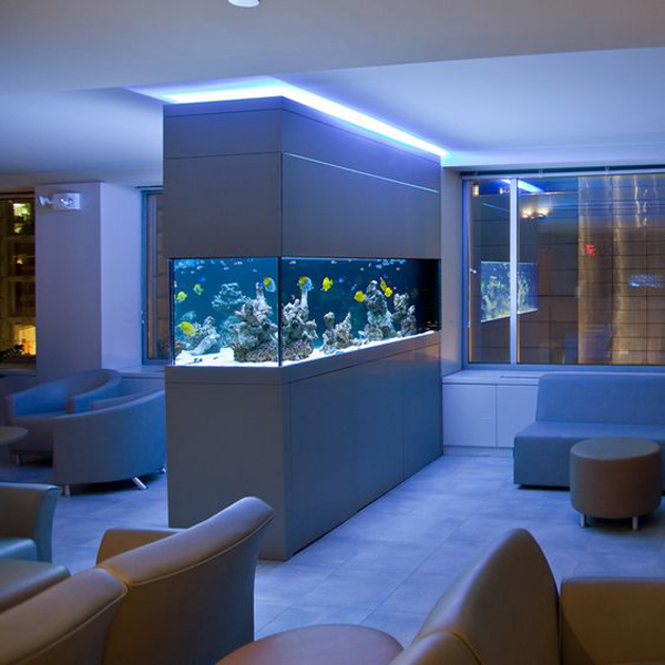 Modern Aquarium Lighting Ideas