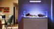 small-modern-aquarium-in-home