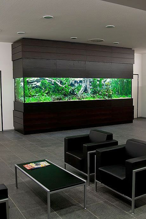 Wooden big aquarium in office - Home aquarium designs ...