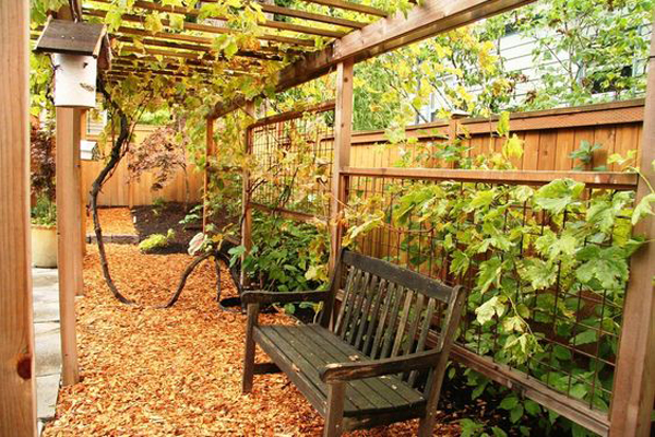 20 beautiful and natural grape arbor ideas home design and interior