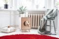 juno-cat-litter-box-design