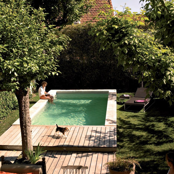 18 gorgeous plunge pools for tiny backyard home design for Pool design for small backyards