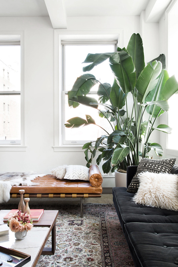 Apartment Indoor Garden Shady indoor garden ideas in loft apartment home design and interior i think adding indoor plants like this would help cushion the heat and help better air circulation the following fresh inspiration for loft apartments workwithnaturefo