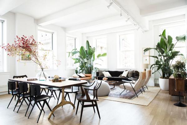 Shady Indoor Garden Ideas In Loft Apartment   Home Design ...