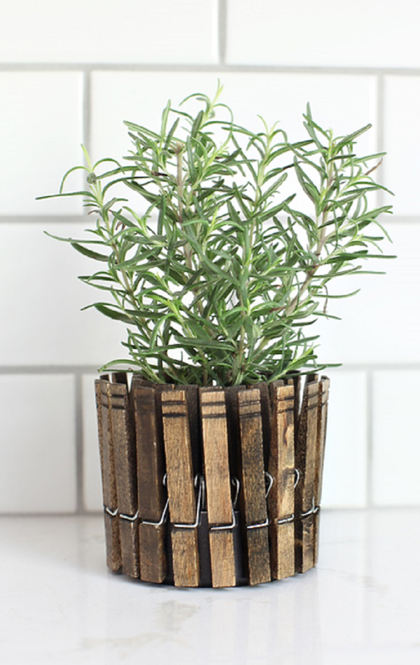 If You Would Rather Simple Ways Then Container Herb With DIY Clothespin Is  What You Need. You Can Use A Wooden Clothespin To Create A Herb Garden That  Will ...