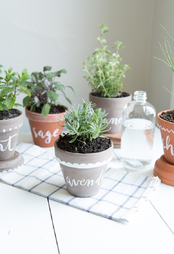 10 Cheap DIY Indoor Herb Containers | Home Design And Interior