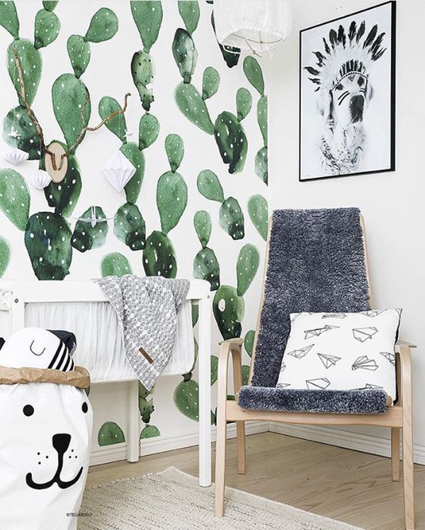 20 Simple Cactus Ideas For Beautify Your Room   Home ...