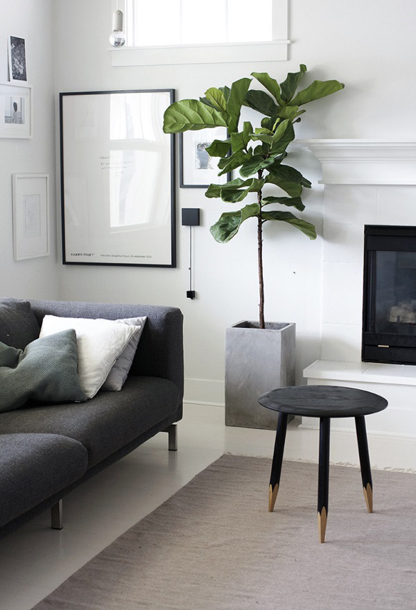 plant for living room 20 modern indoor garden with scandinavian style home 15059