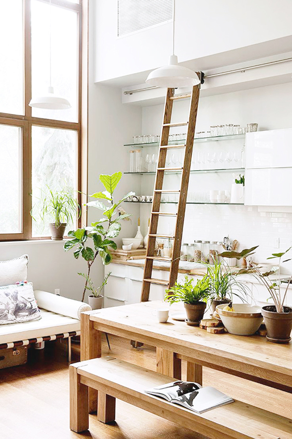 Plants For Kitchen To Decorate It: 20 Modern Indoor Garden With Scandinavian Style