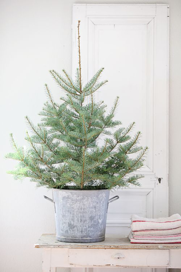 Gallery Of 20 Simple Christmas Tree Display For Small Es