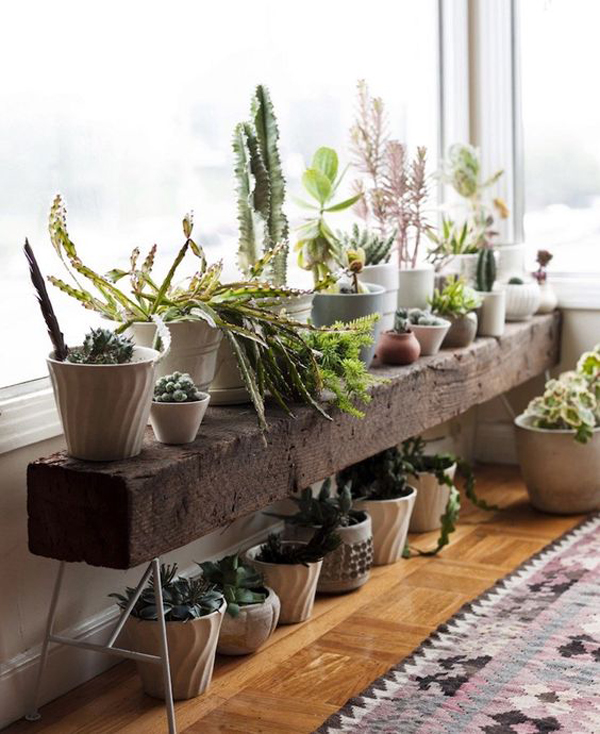 20 Modern Indoor Garden With Scandinavian Style