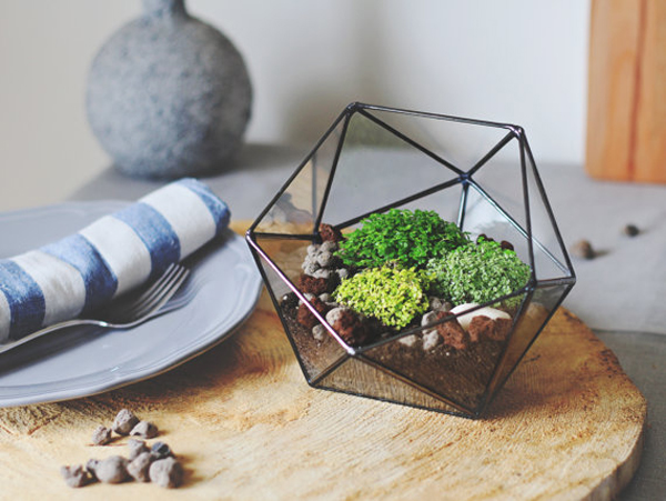 Geometric Glass Terrarium Ideas Home Design And Interior