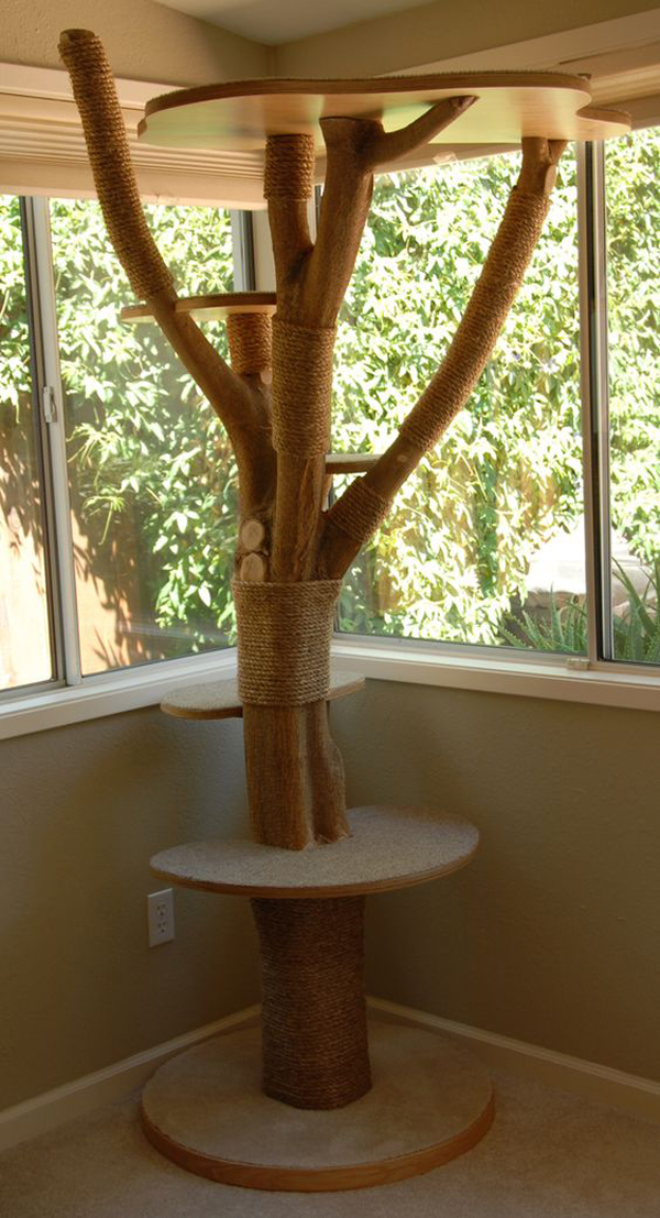 25 Indoor Cat Tree Ideas For Play And Relax Home Design