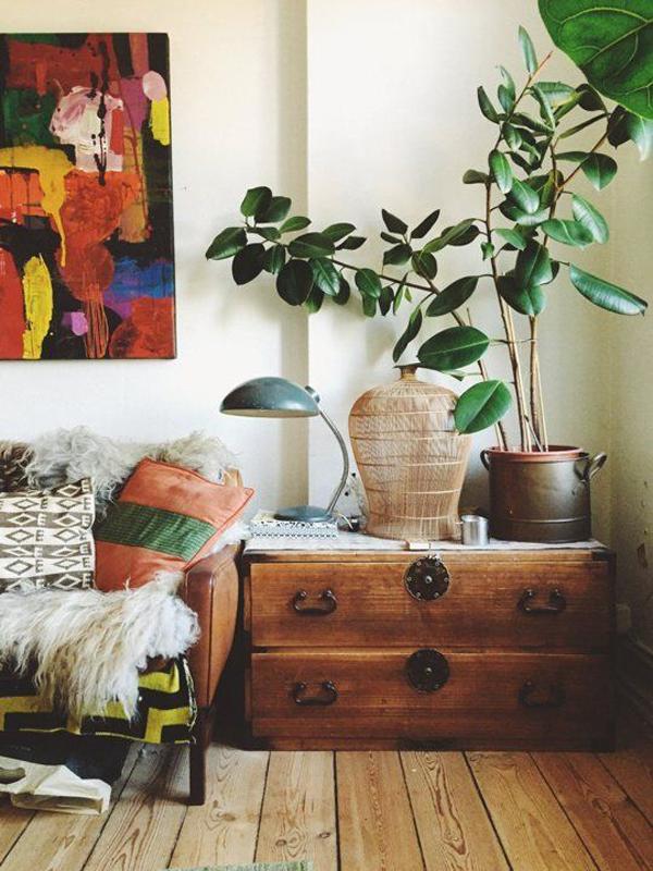 Bohemian Indoor Plant Decor Home Design And Interior