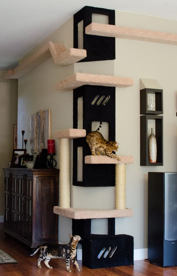 25 Indoor Cat Tree Ideas For Play And