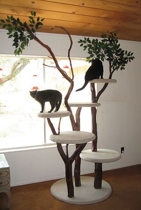 Cool Cat Tree Concept Homemydesign